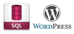 WordPress SQL islemleri emresupcin 300x138 - WordPress SQL İşlemleri Nasıl Yapılır?