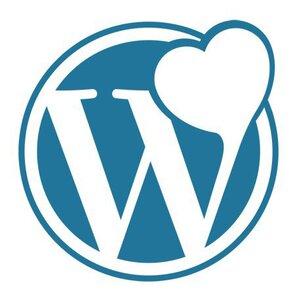 Her Yonuyle WordPress emresupcin 295x300 - Her Yönüyle WordPress Çünkü...
