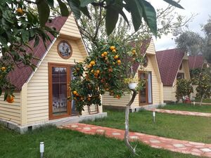 kazdaglari idavilla otel mandalina bahcesi emresupcin 300x225 - Akçay Bungalov Otel